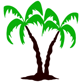 Palm tree bc